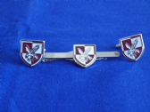 16th AIR ASSAULT BRIGADE CUFF LINK AND TIE GRIP / CLIP SET